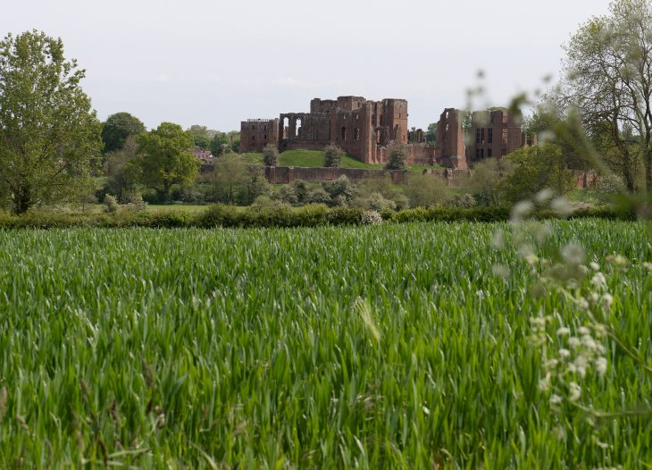 View of Kenilworth Castle from Grounds Farm